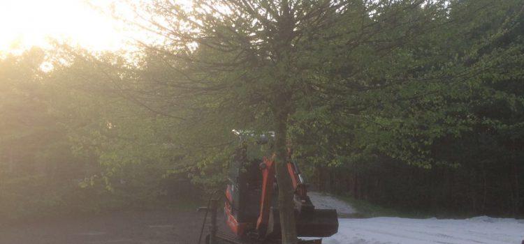 Spielplatz im Harkebrügger Wald – Die Basis ist geschaffen