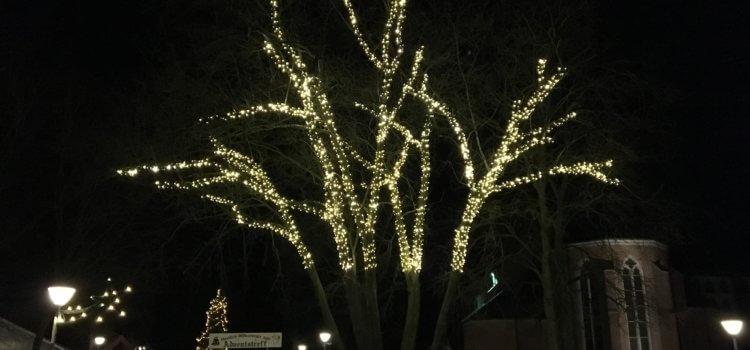 Adventszeit – Baum erstrahlt in neuem Glanz