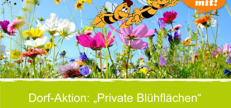 Dorf-Aktion – Prämierung der Blühflächen